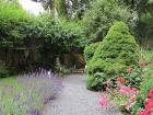 revitalizace-zahrady-praha-02.jpg