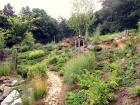 zahrada-kovary-17.jpg