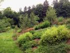 zahrada-kovary-18.jpg
