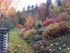 zahrada-kovary-25.jpg
